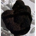Frozen Oregon Black Truffles