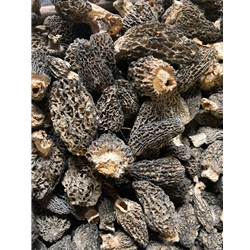 Dried Wild Morel Mushrooms from the USA, Wild Crafted