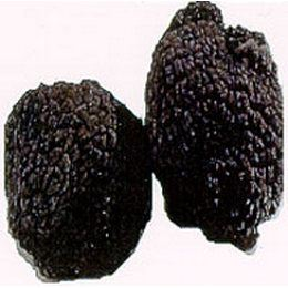 Fresh Black Winter Truffles -Perigords