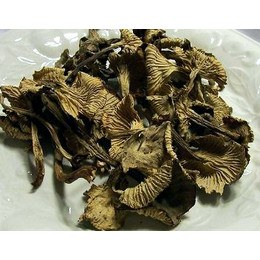 Dried Yellow Feet Mushrooms